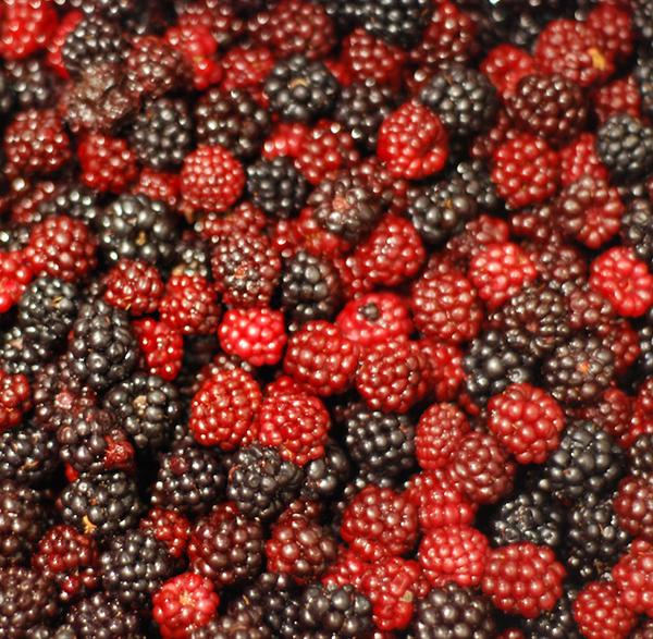 raspberry-and-blackc2