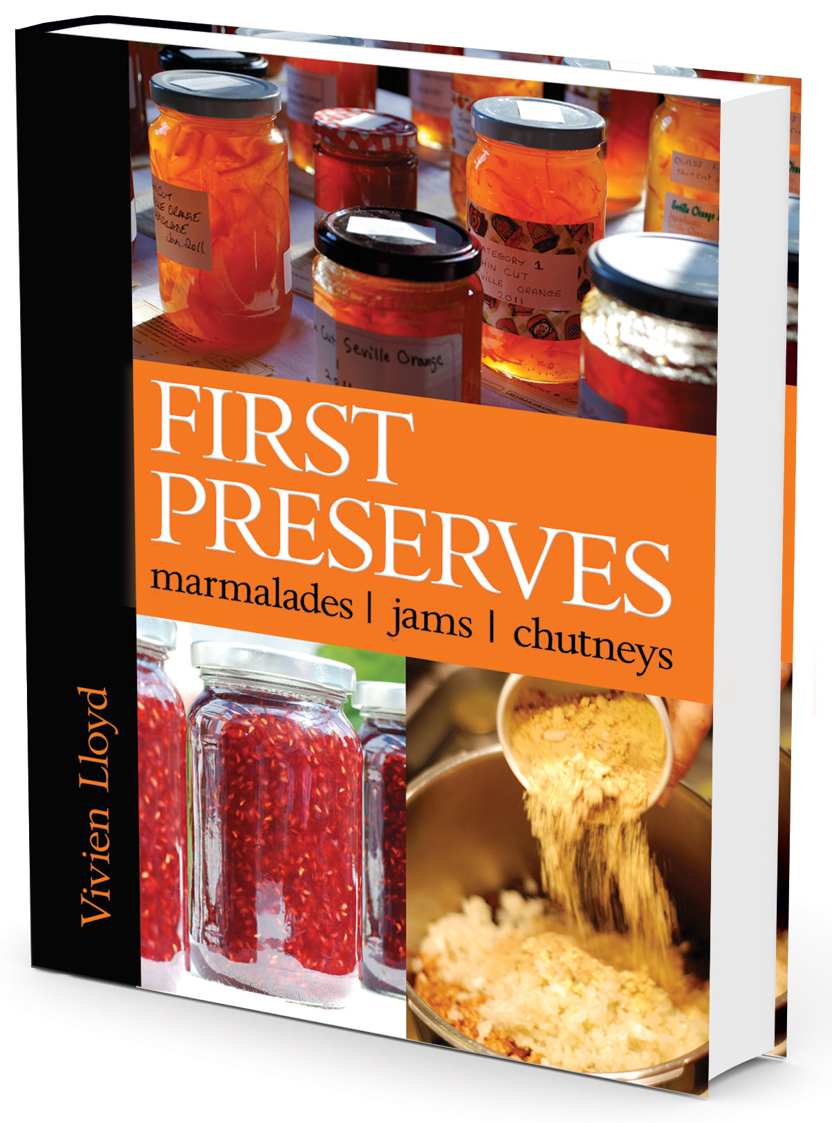 Vivien lloyd First Preserves